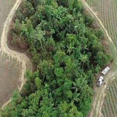 website-nrip-vegetation-project