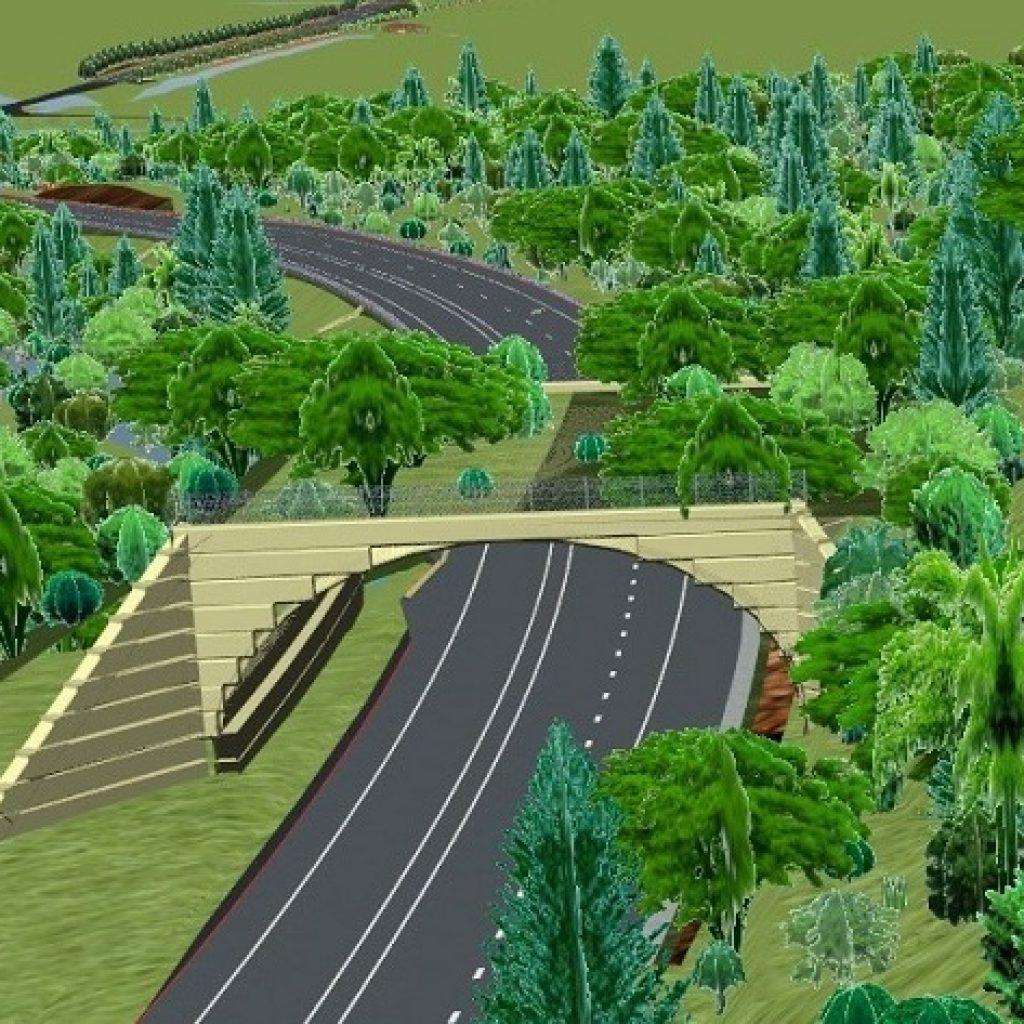 World-first cassowary land bridge