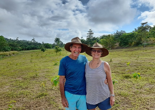 Tree planting to connect critical habitat